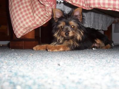 Under bed